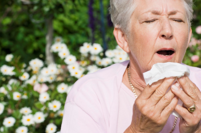 How to Survive Allergies in the Spring