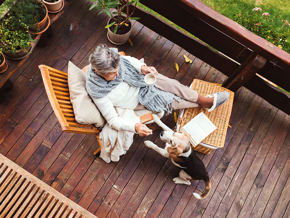the havenwoof caregiver mission